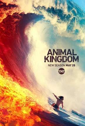 Série Animal Kingdom - 4ª Temporada Legendada
