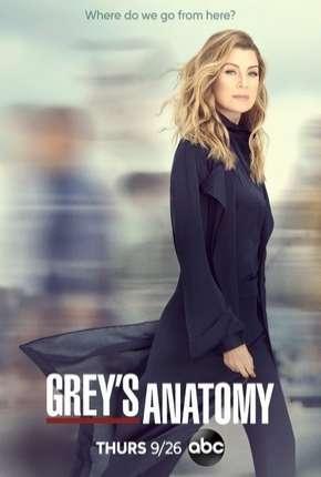 Série A Anatomia de Grey - Greys Anatomy - 16ª Temporada