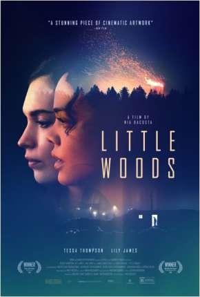 Filme Little Woods - Legendado