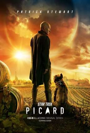 Série Star Trek - Picard - Legendada