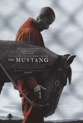 Filme The Mustang