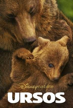 Filme Ursos