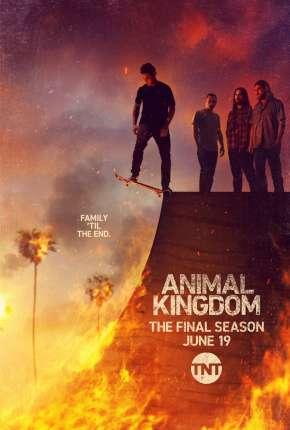 Série Animal Kingdom - 5ª Temporada Legendada
