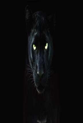 Filme Pantera Negra - O Reino Selvagem
