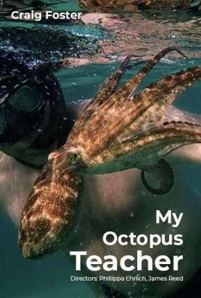 Filme Professor Polvo - Legendado