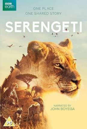 Série Serengeti - 2ª Temporada Completa Legendada